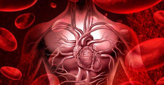 Secretaría de Salud trabaja por disminuir el riesgo cardiovascular